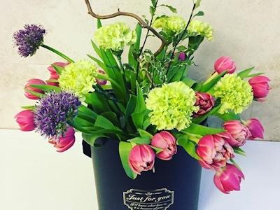 Miss Fleur – Cutie florala Spring Symphony